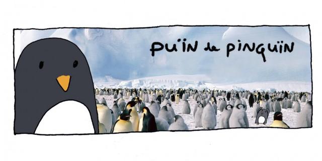 Puïn de Pinguïn